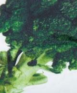 ブロッコリーパーカー シルクスクリーン印刷 拡大